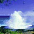Beach Fountain Live Wallpaper Icon