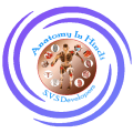 Anatomy & Physiology In Hindi Icon