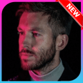 Calvin Harris Music Icon