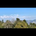 Pyara Uttarakhand Icon