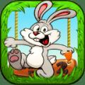Bunny Run 2 Icon