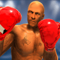 Punch Boxing World TAG Tournament : Ring boxing 3D Icon