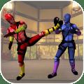 Ninja Kung Fu Fighting Champion Icon