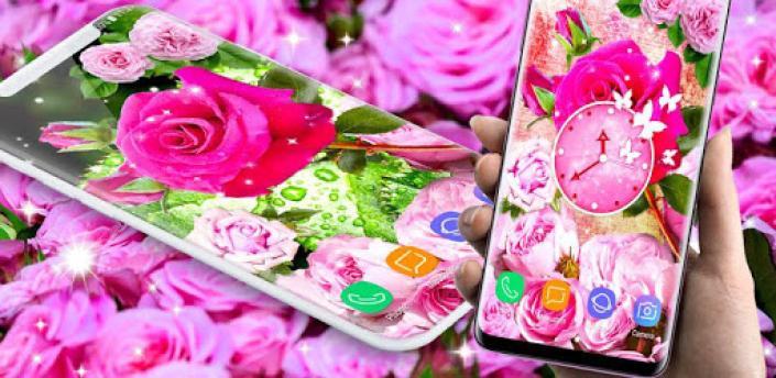 Pink Rose Live Wallpaper 🌹 Parallax 4K Wallpapers apk