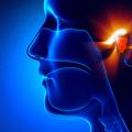 ENT and Otolaryngology Icon