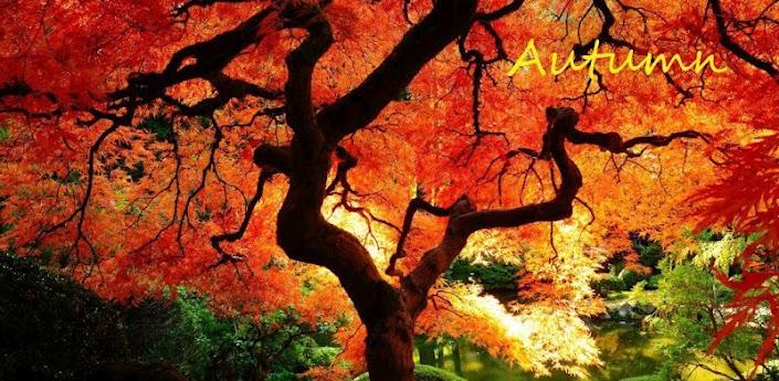 Осень apk