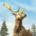 Archery Hunting Icon