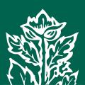Fiscalite Icon