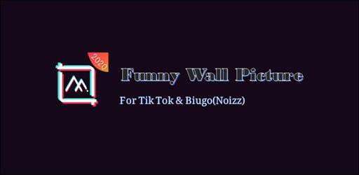 Funny Wall Picture For Tik Tok&Biugo(Noizz) apk