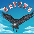 Raven's Nest Icon