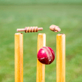 Cricket News & Live Scores Icon