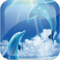 Dolphins Live Wallpaper Background Theme LWP Icon