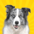Real Pets™ by Fruwee Icon