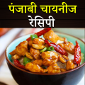Punjabi Chinese Recipes in Hindi Icon