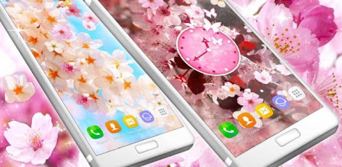 Sakura Live Wallpaper 🌸 Flower Blossom Wallpapers apk