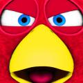 Bird Run, Fly&Jump: Angry Race Icon