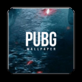 I Love High Quality pubg Wallpaper. Icon