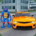 Ninja Shadow: Turtle Warrior Icon