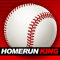 Homerun King - Pro Baseball Icon
