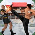 Kung fu man vs superhero fighting game Icon