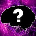 Кто я? Часть 2. Психологические тесты Icon