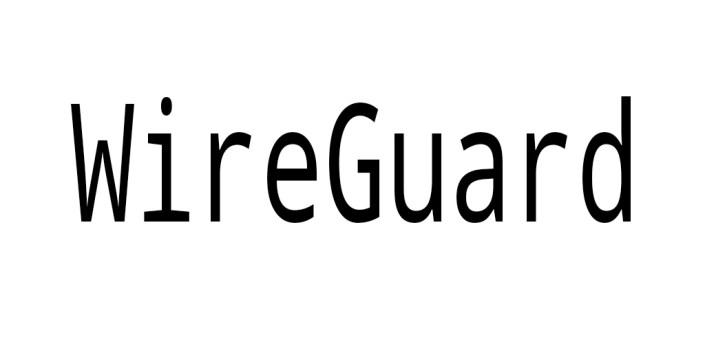 WireGuard Plugin - SagerNet apk
