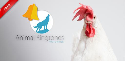Animals: Ringtones apk