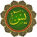 Yasin -i-Sharif Icon