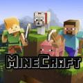 3D skins Minecraft PE Icon