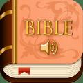 Audio Bible Icon