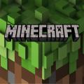 Minecraft 2020 Icon