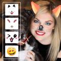 Cat Face Photo Editor Icon