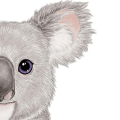 Cute Koala Wallpapers  Art Icon