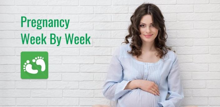 Pregnancy Week By Week apk
