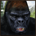 Crazy Gorilla Rampage Icon