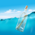 Message In The Bottle Icon
