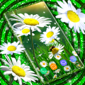 Daisy Parallax Wallpapers 🌼 HD Live Wallpapers Icon