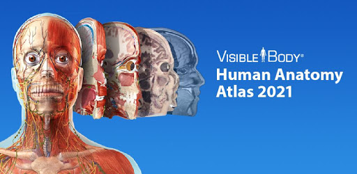 Human Anatomy Atlas 2021:Complete 3D Human Body apk