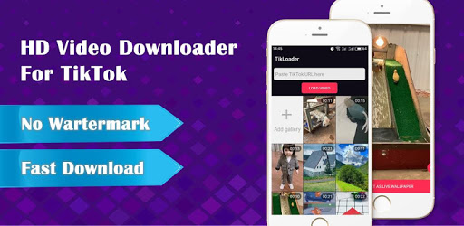 Wall Picture for Tik Tok - Downloader No Watermark apk