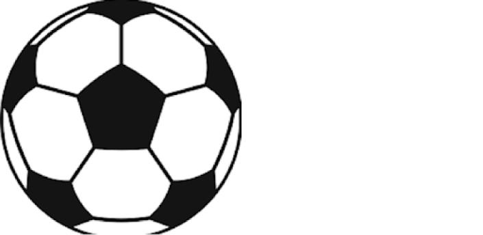 100%PERFECTODDS Free Football Betting Predictions apk