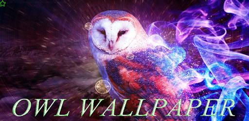 Owl Wallpaper HD apk