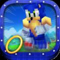 Hero Run Sonic the Hedgehog Running Adventure Maps Blocks Icon