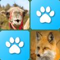 Pairs: Animals Icon