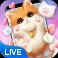 3D Cute Cat Theme 😺 Icon