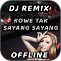 DJ Kowe Tak Sayang Sayang Offline Icon