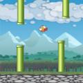 Flying Bird - Flapper Birdie Game Icon