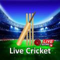 Cricket Scores For ipl: Live Stream Score 2021 Icon