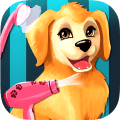 Become a Puppies Groomer Icon