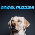 Animals Puzzle Icon