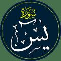 Surah  Yasin  Reading Icon